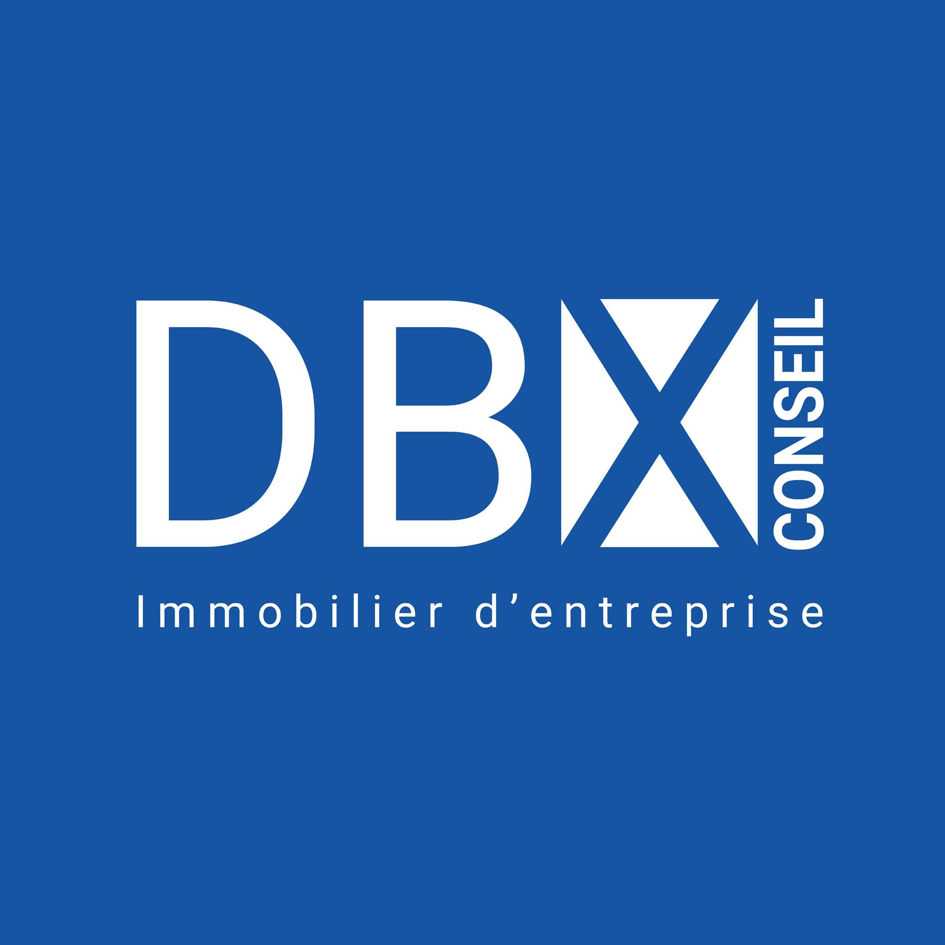 dbx conseil a 15 ans dbx conseil. Black Bedroom Furniture Sets. Home Design Ideas