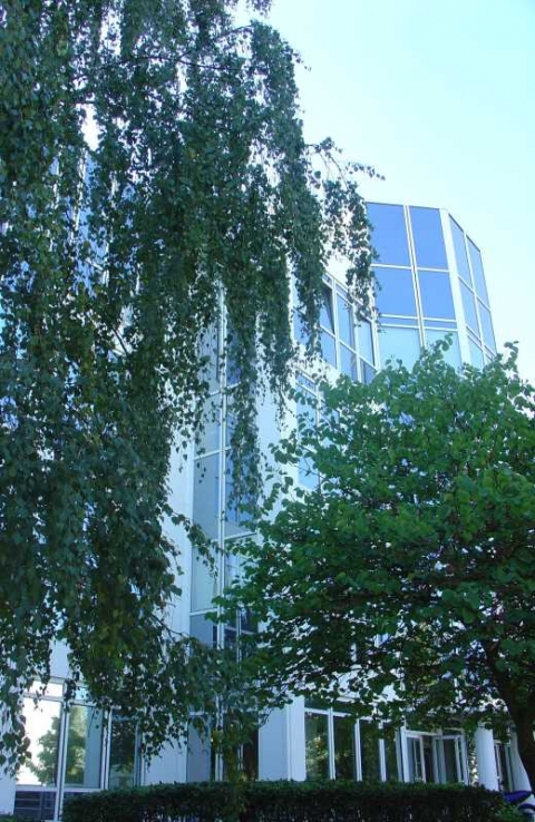 Location Bureaux VELIZY-VILLACOUBLAY - Photo 1
